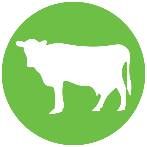 Dairy Operations Cow icon