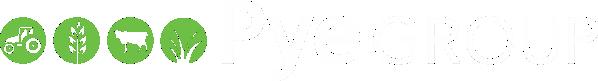 Pye Group Logo