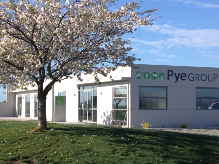 pye group office